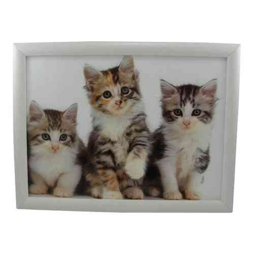 Laptray Kittens schootdienblad